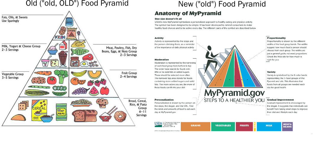 So, what exactly am I supposed to eat? The new MyPlate icon vs ...